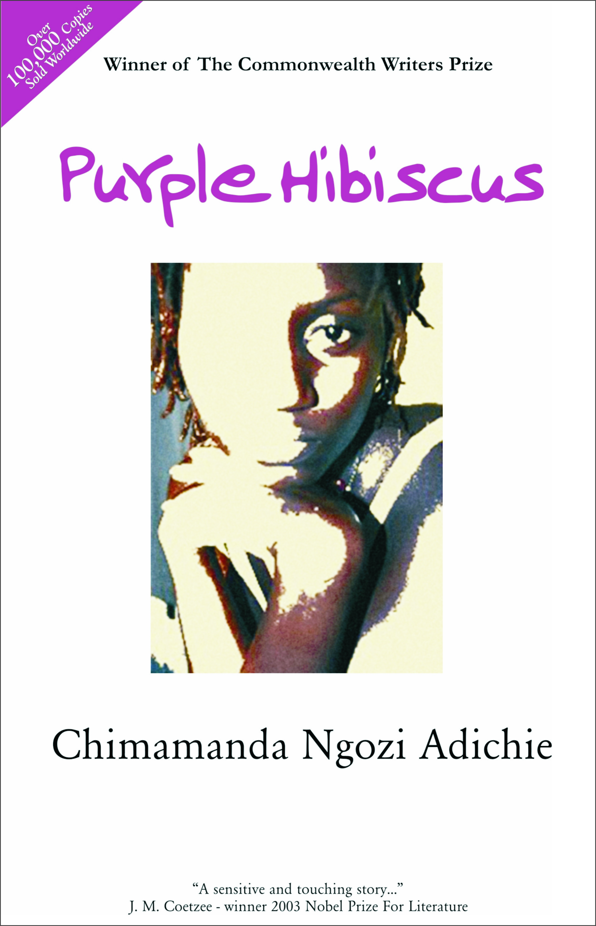A Review Of Purple Hibiscus Farafina Books